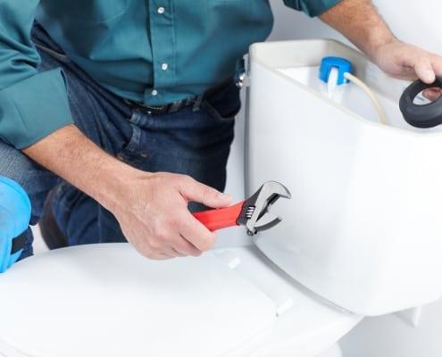 leakytoillet mintplumbing